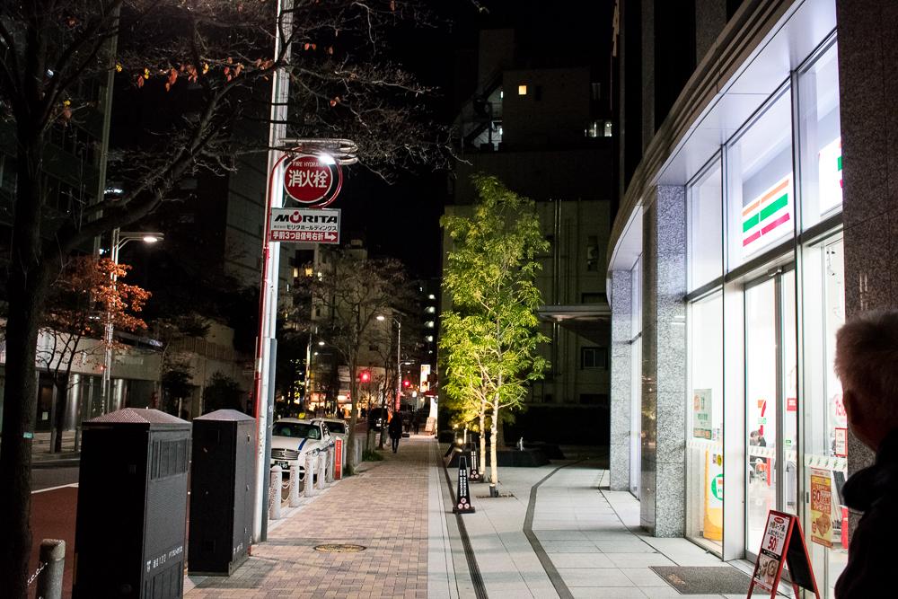 shiba park hotel review tokyo