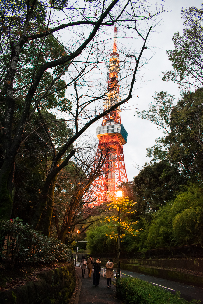 things to do at tokyo tower