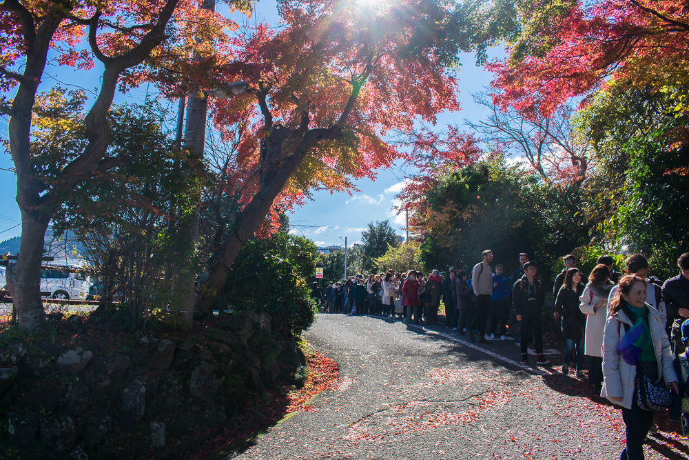 where to go in hakone