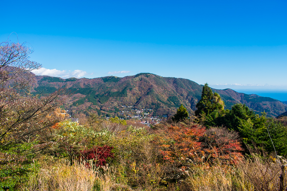 hakone day trip