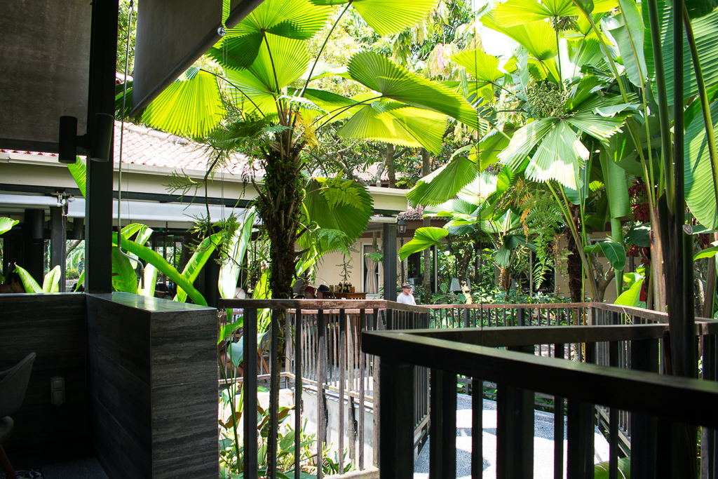 review of the halia restaurant singapore botanic gardens