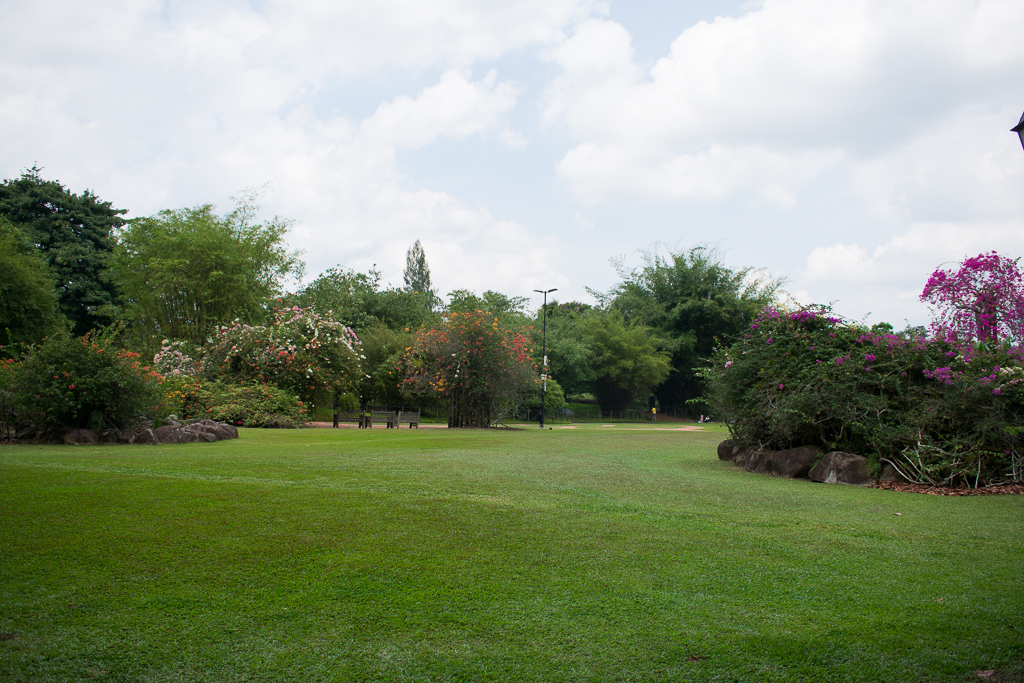singapore botanic gardens 2018