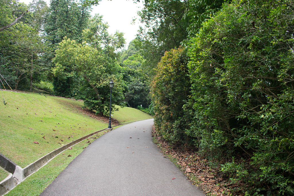 review singapore botanic gardens