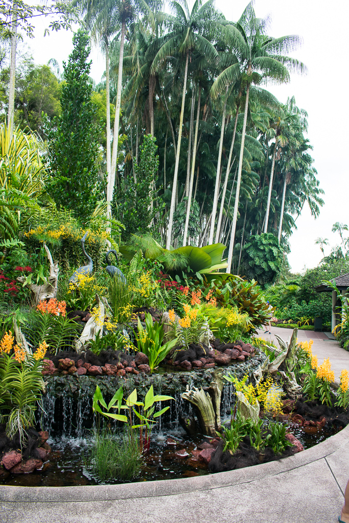 singapore botanic gardens sightseeing