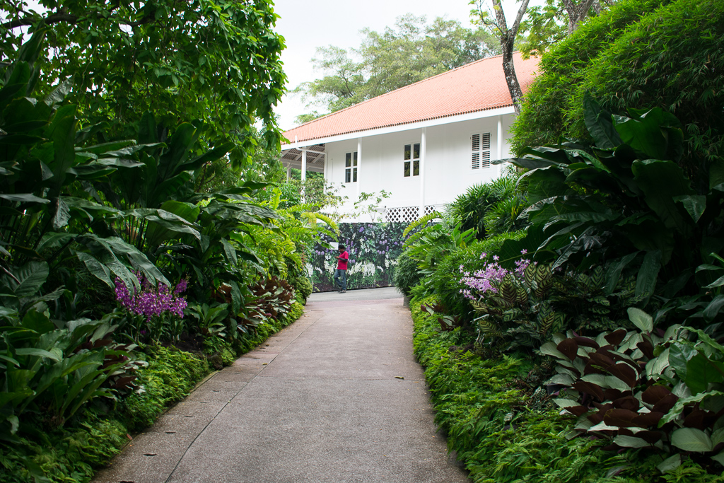 travel to singapore botanic gardens