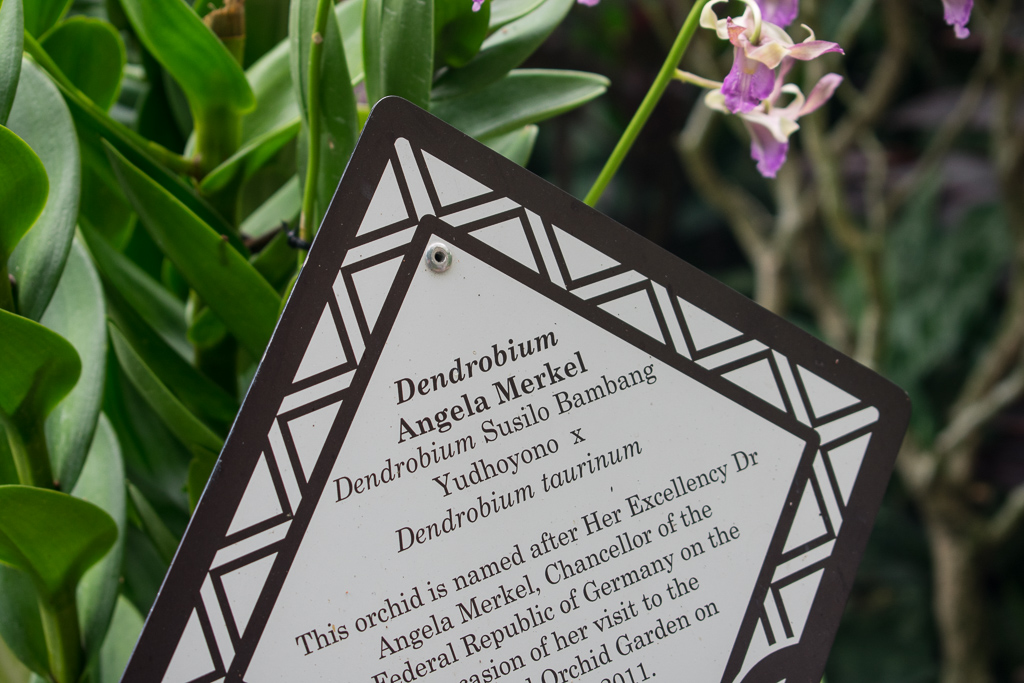 singapore botanic gardens angela merkel
