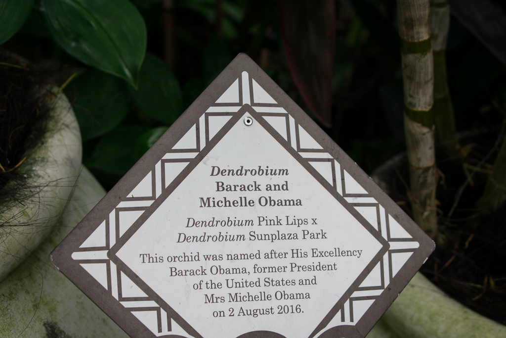 michelle obama singapore botanic gardens