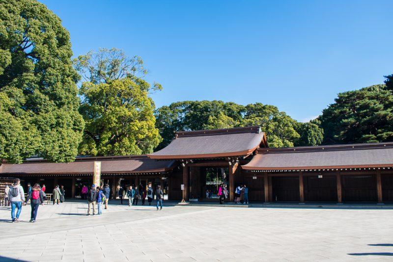 meiji shrine pictures