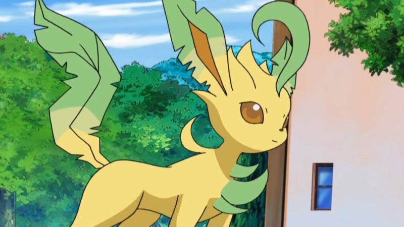 best leaf type pokemon in 2018