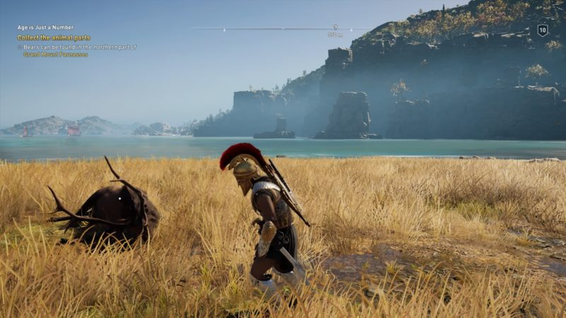 where to find bears and deers in assassins creed odyssey