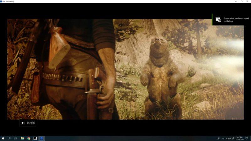 rdr 2 - hunting a bear