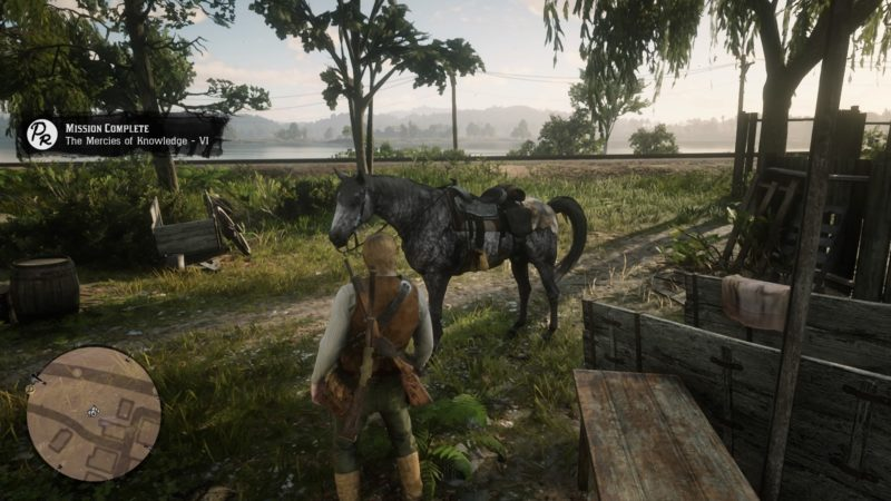 the-mercies-of-knowledge-mission-objectives-red-dead-redemption-2