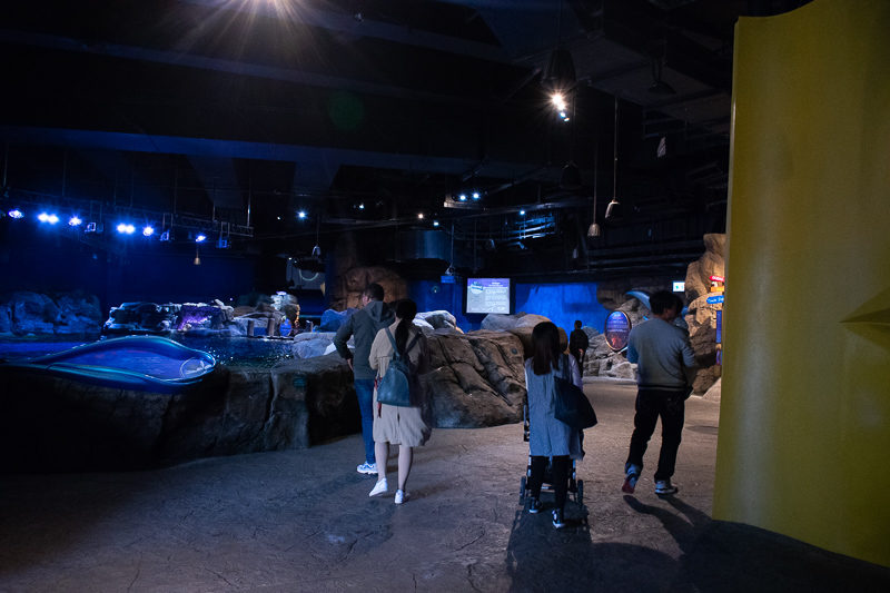 grand aquarium ocean park hong kong 2019