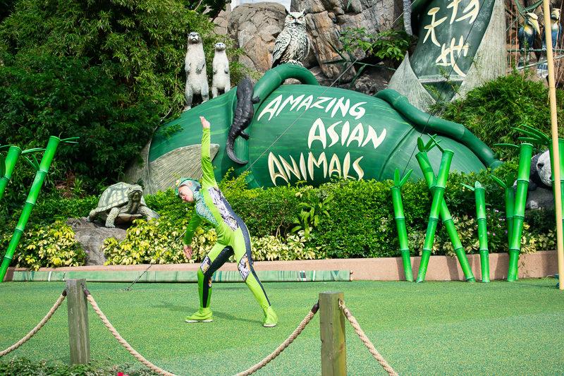 ocean park performance acrobats