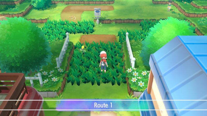 pallet town - route 1