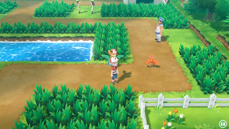 pokemon let's go route 6 guide and walkthrough