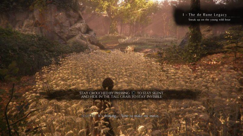 A Plague Tale Innocence - The Rune De Legacy quest walkthrough