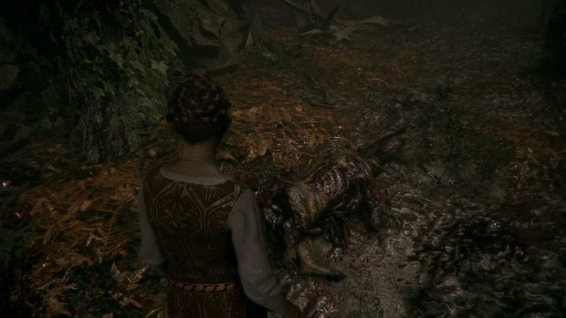 A Plague Tale Innocence - The Rune De Legacy quest wiki