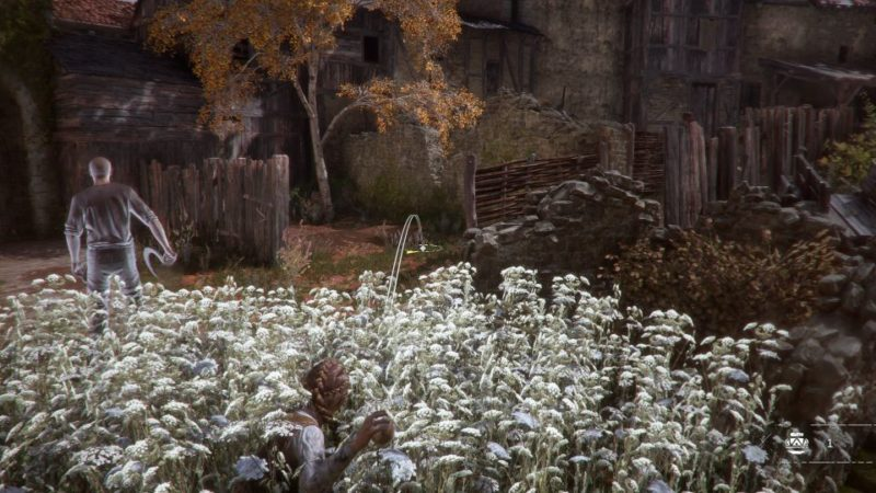 A Plague Tale Innocence - the strangers wiki and guide
