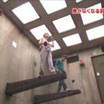bizarre japanese game show