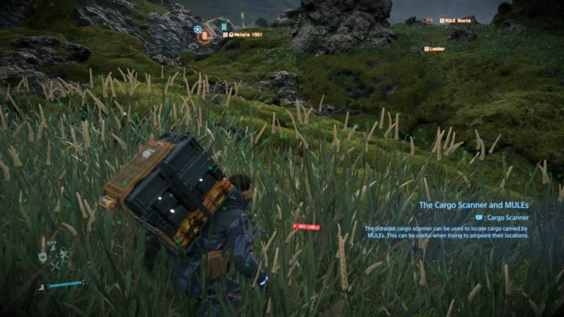 death stranding - order no.7 quest guide