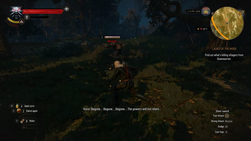 Witcher 3 in the heart of the woods