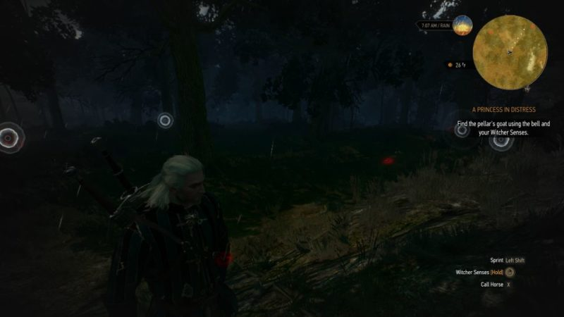 a princess in distress - witcher 3 guide