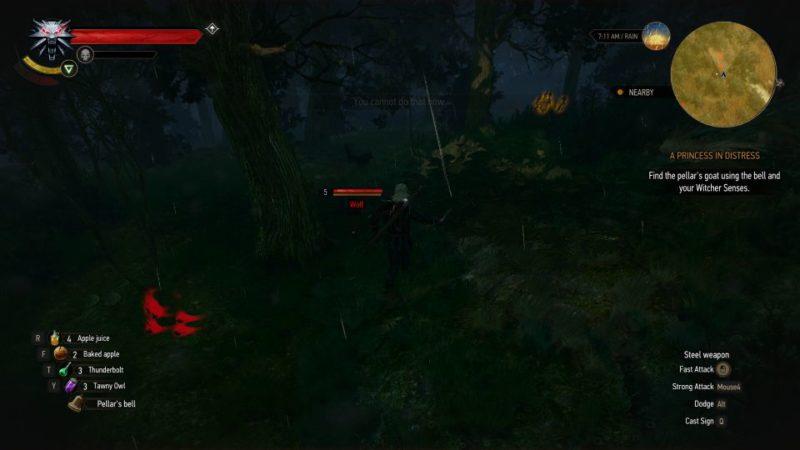 a princess in distress - witcher 3 walkthrough