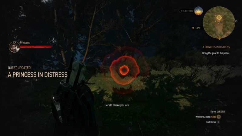 a princess in distress - witcher 3 wiki