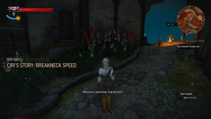 ciri's story - breakneck speed witcher 3
