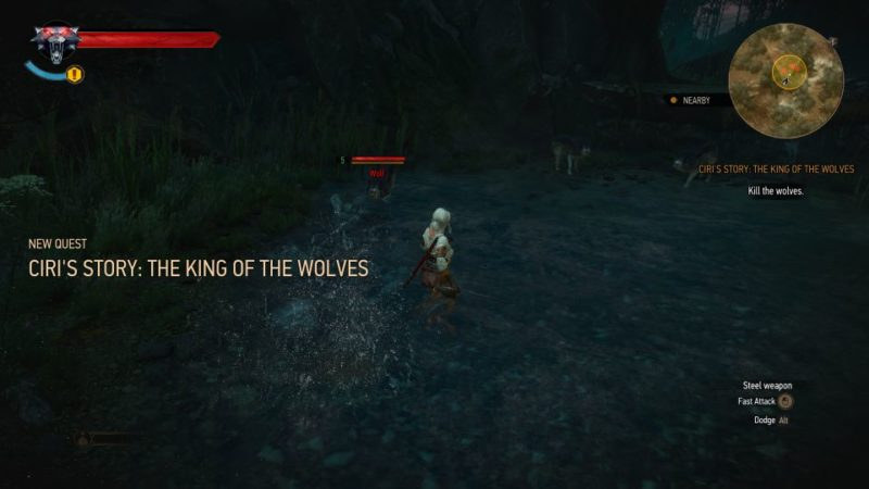 ciri's story - the king of the wolves - witcher 3 mission