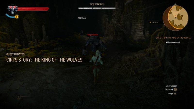 ciri's story - the king of the wolves - witcher 3 tips
