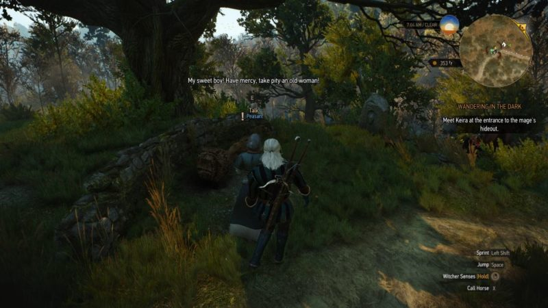 defender of the faith - witcher 3