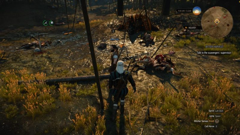 fake papers - the witcher 3 wiki