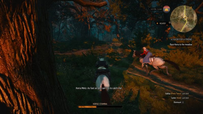 the witcher 3 - a favor for a friend walkthrough and guide