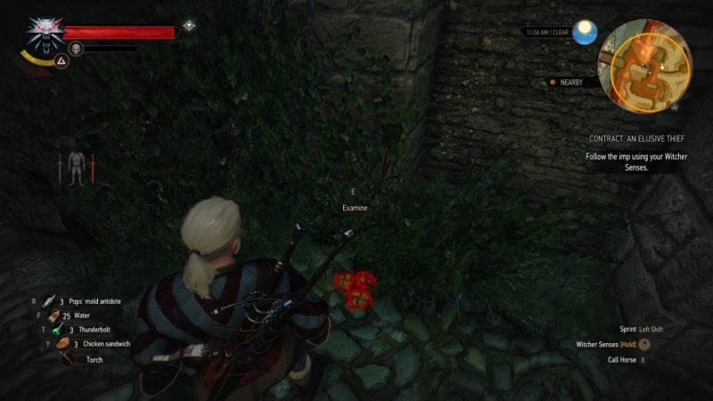 the witcher 3 - an elusive thief quest guide