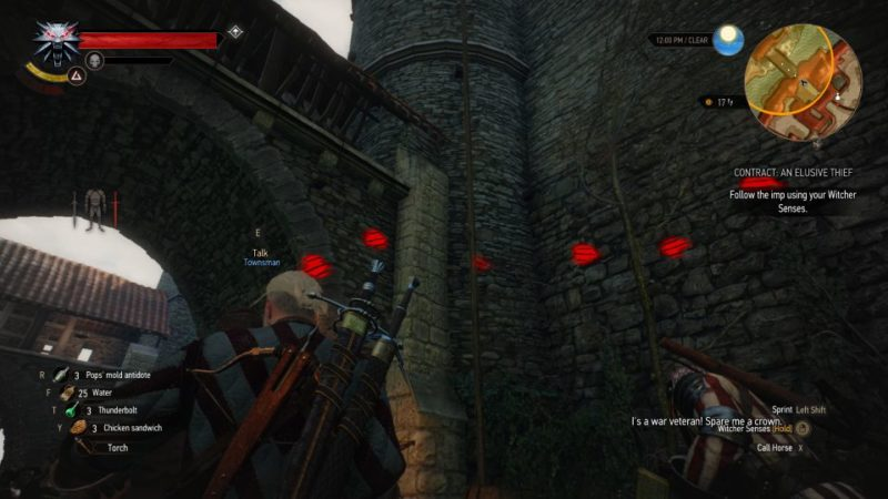 the witcher 3 - an elusive thief walkthrough