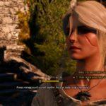 the witcher 3 - blood on the battlefield walkthrough