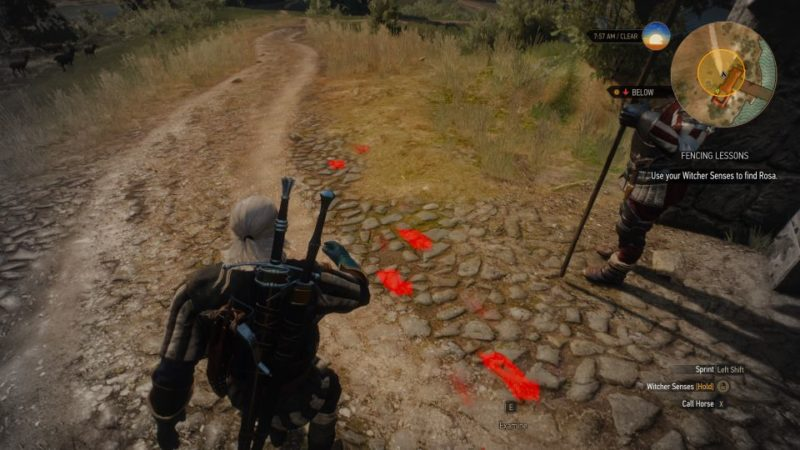 the witcher 3 - fencing lessons mission