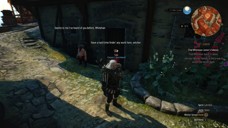 the witcher 3 - get junior help