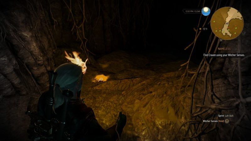 the witcher 3 - nameless tips