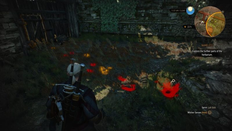 the witcher 3 - nameless wiki