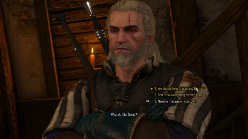 the witcher 3 - now or never quest