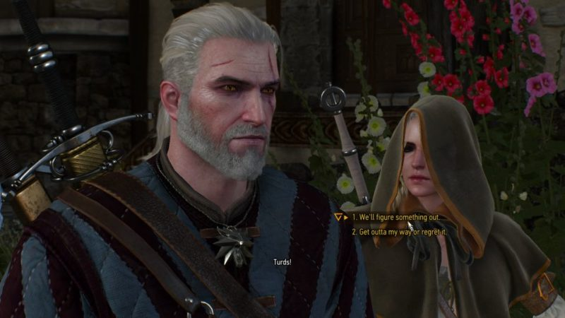 the witcher 3 - payback mission