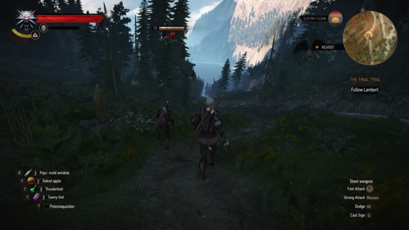 the witcher 3 - the final trial quest guide