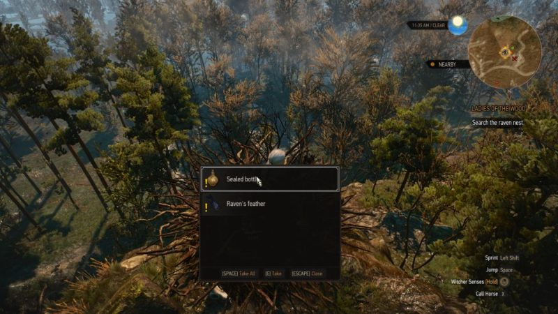 the witcher 3 - the whispering hillock - choose evil spirit or the witches