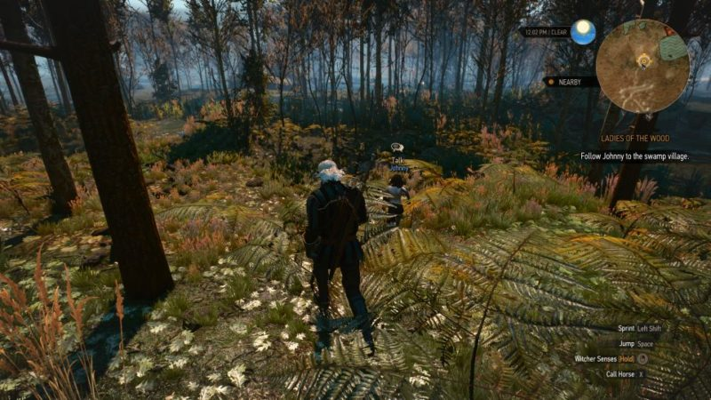 the witcher 3 - the whispering hillock different endingd