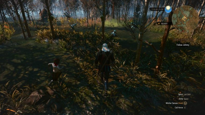 the witcher 3 - the whispering hillock quest guide