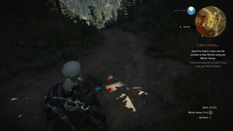 the witcher 3 - to bait a forktail