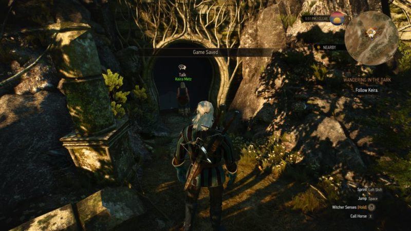 wandering in the dark - the witcher 3 quest